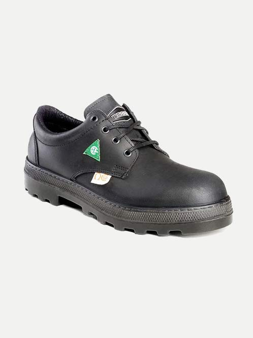 Terra A Pattern Casual Safety Shoe